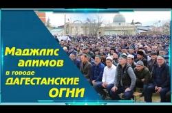 Embedded thumbnail for Маджлис алимов в г. Дагестанские Огни
