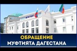 Embedded thumbnail for Муфтият Дагестана призвал жителей совершать таравих-намазы дома