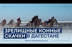 Embedded thumbnail for В Дагестане прошли зрелищные конные скачки
