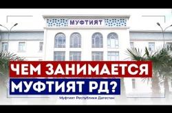 Embedded thumbnail for ЧЕМ ЗАНИМАЕТСЯ МУФТИЯТ ДАГЕСТАНА?
