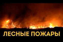 Embedded thumbnail for Лесные пожары в Дагестане